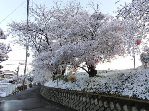 Nagano 5